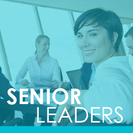 Senior Leaders Mentoring Programme 2017