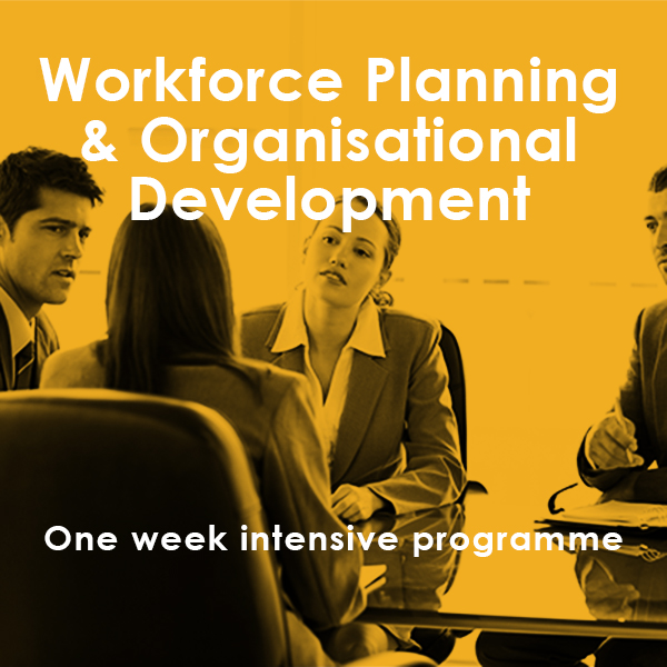 Workforce Planning in Local Government One Week Intensive